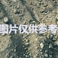 长期出售硅泥巴含硅量44每月有300吨