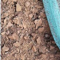 批量采购红土镍矿,自然基1.5%镍以上