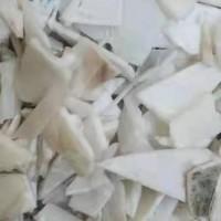 常年现金收购白电瓶壳粉碎料,电话微信同号